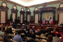 Central Brooklyn Council Members Consider Participatory Democracy for District Improvements