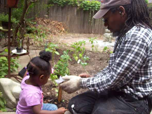 Gardener Kenny Harris works with Chelsea Williams in a Clinton Hill backyard vegetable garden.