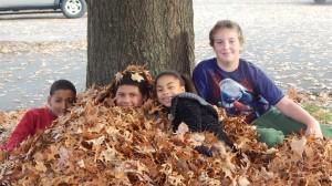 Fall in Lansingburg, NY