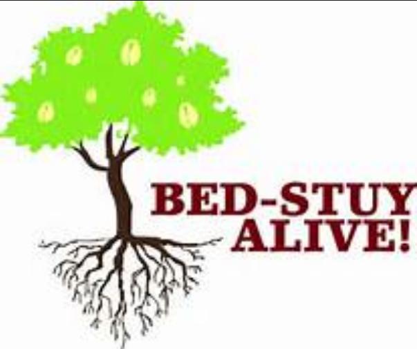 THIRTEENTH ANNUAL BED-STUY ALIVE! CELEBRATION  SHINES LIGHT ON EDUCATION
