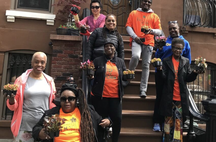 A Flowering of Spirit & Neighborhood at Annual Bed-Stuy Planting Event