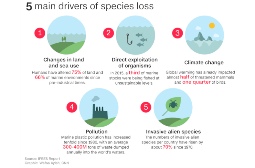 Human Society Under Urgent Threat from Loss of Earth's Natural Life-Support Systems