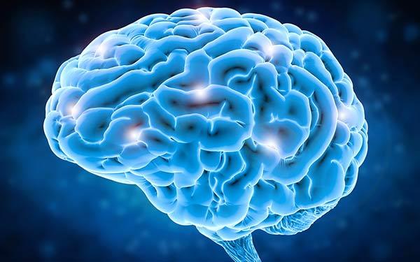 Readjusting Daily Habits Improves Brain Health