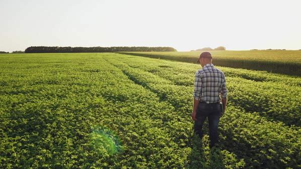 Democrats Fail to Persuade Swathes of Rural America's Heartlands