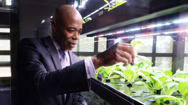 The Future of Urban Agriculture …