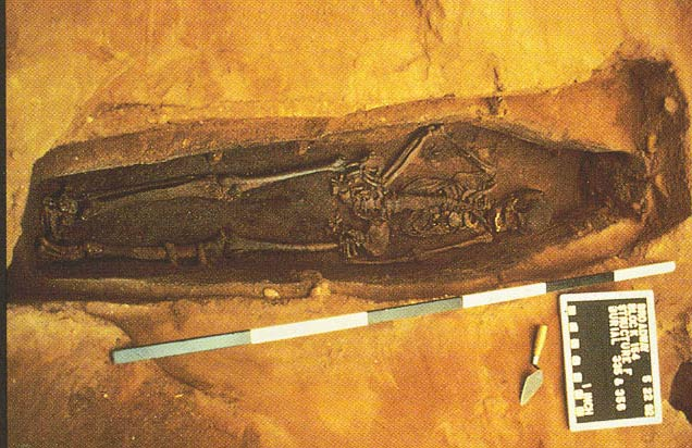 The African Burial Ground: Legacy of Struggle